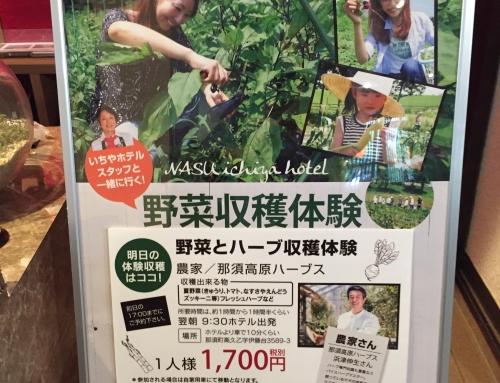 新鮮野菜の宝庫!